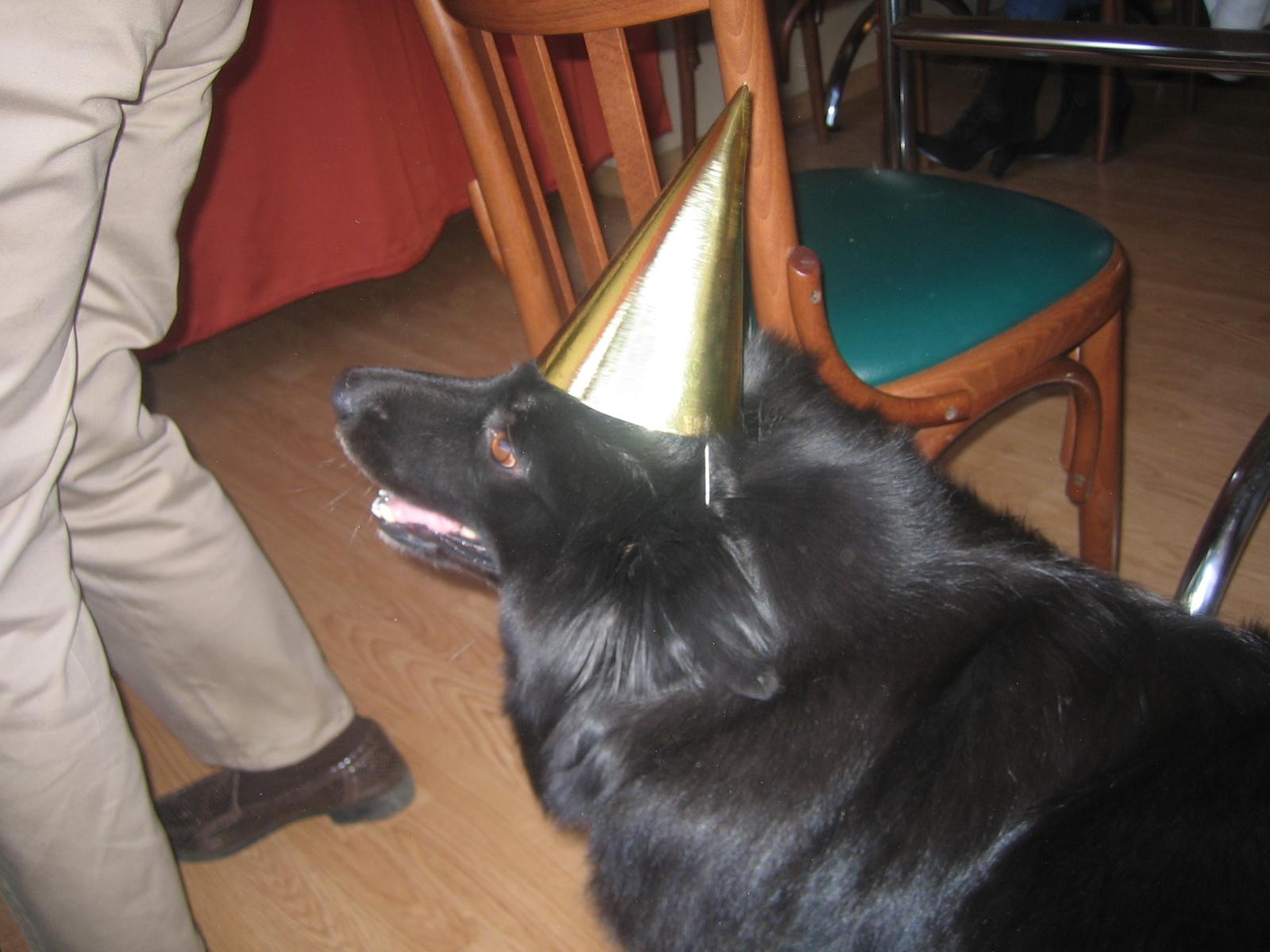 Party zeb!!!